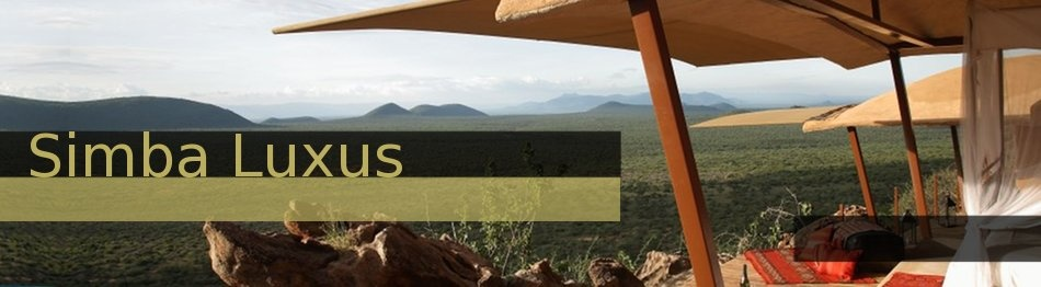 Luxury-Exclusive way to experience Kenya
